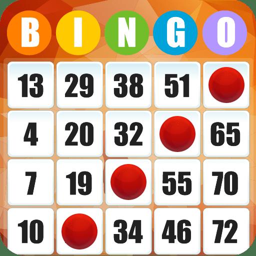 bingo pays