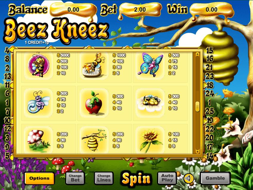 Beez Kneez Slot Gameplay