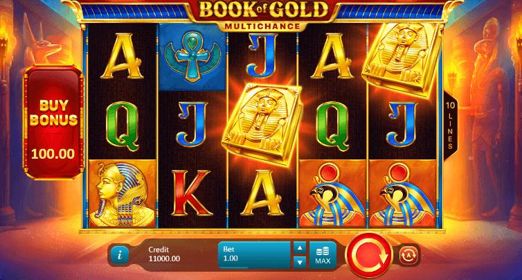 Book of Gold Multichance Slot Bonus