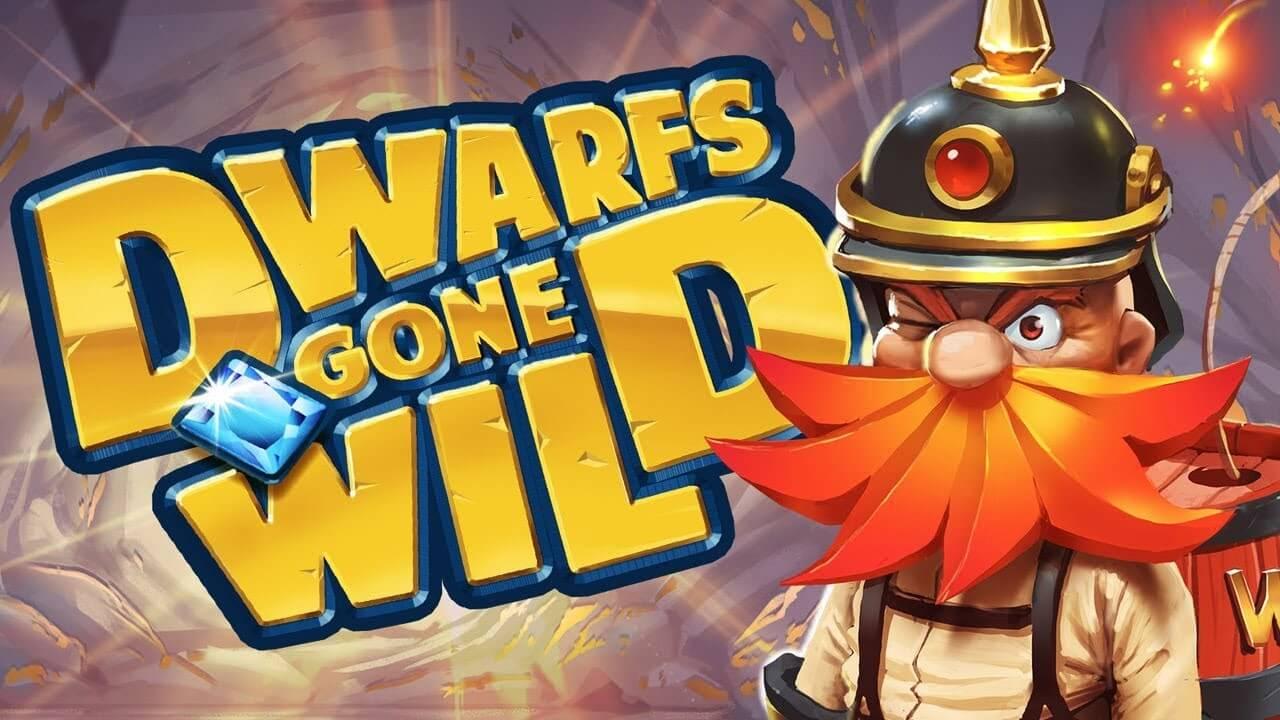 Dwarfs Gone Wild Review