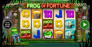 Frog of Fortune Gameplay