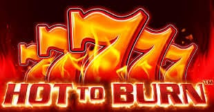 Hot to Burn Slot Review
