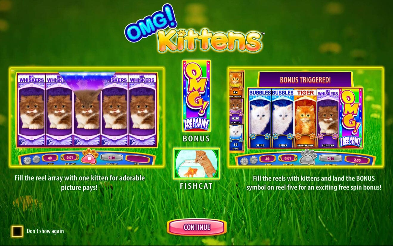 OMG Kittens Slot Bonus