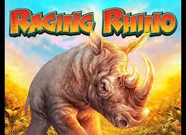 Raging Rhino Review