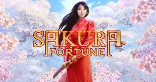 Sakura Fortune Review