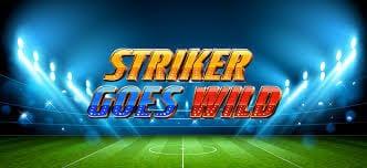 Striker Goes Wild Review