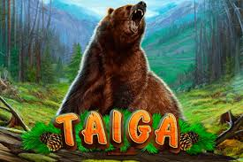 Taiga Review