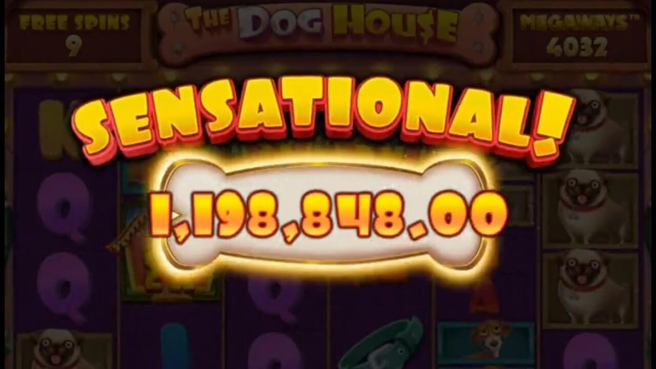 The Dog House Megaways Slot Win