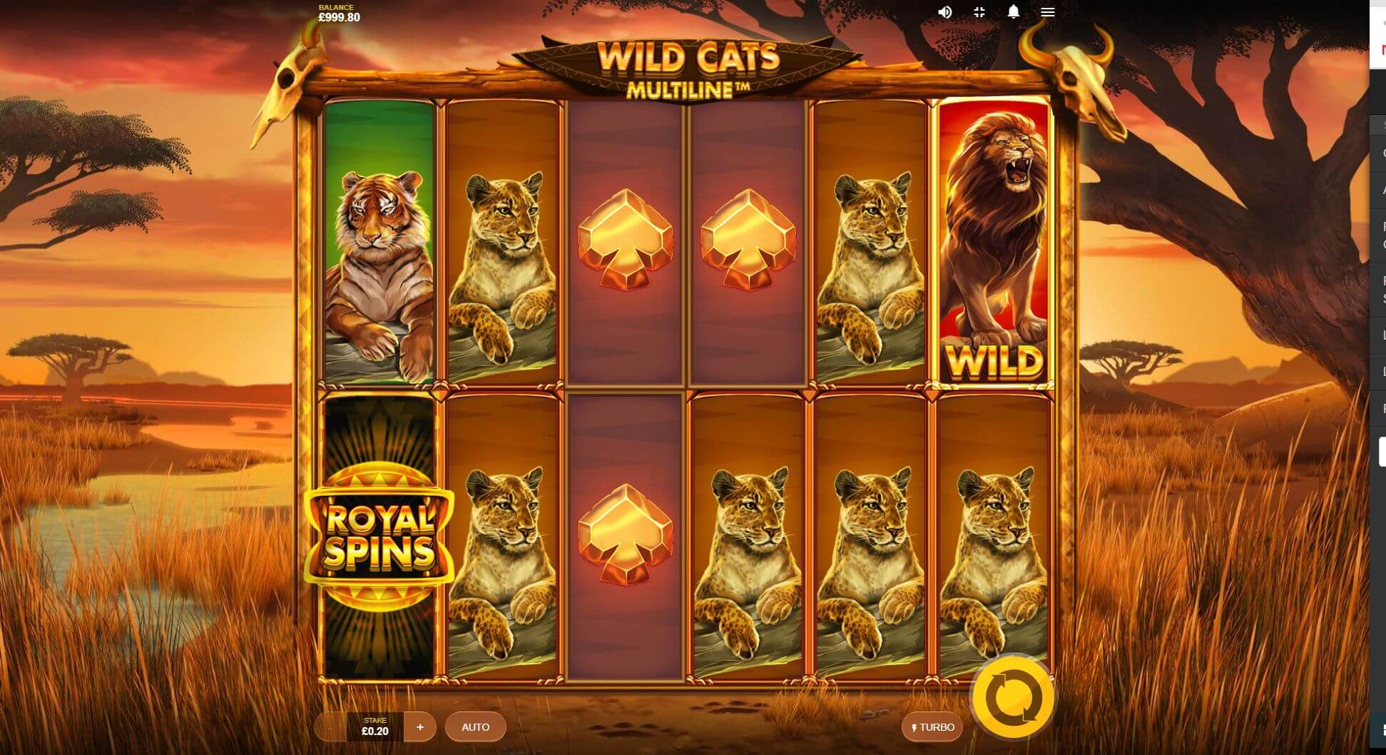 Wild Cats Multiline Slot Bonus