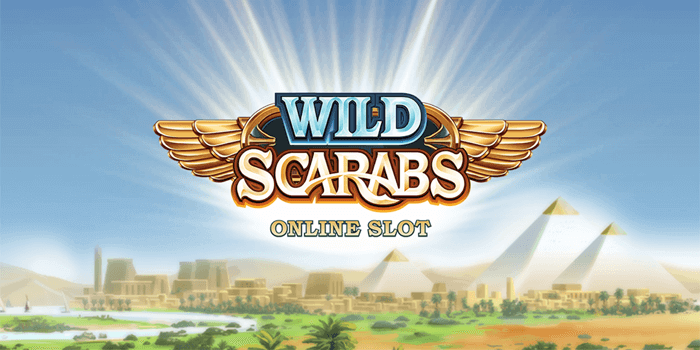 Wild Scarabs Review