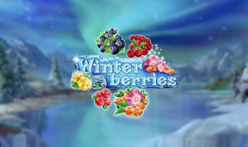 Winterberries Review