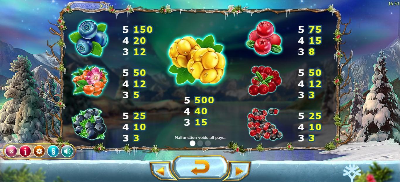 Winterberries Slot Paytable