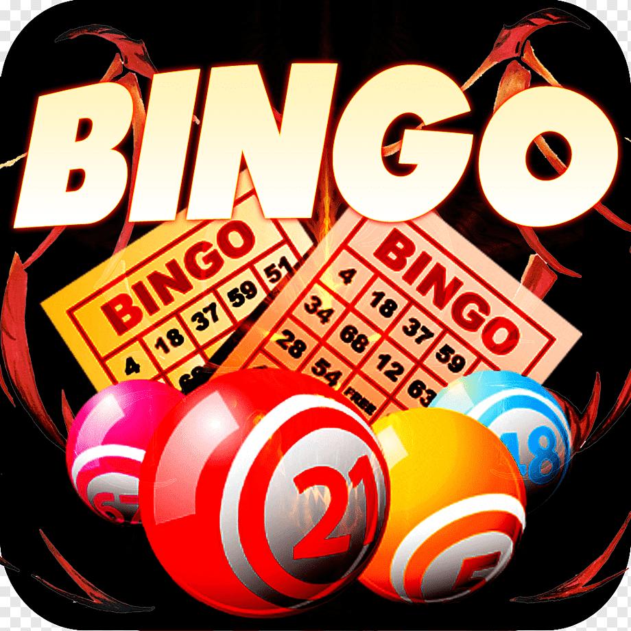 Bingo Real Prizes
