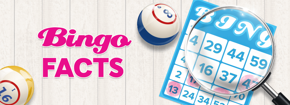 10 Bingo Facts you Must Know