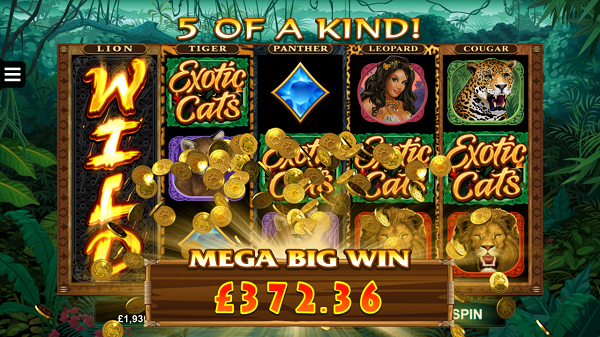 exotic cats spins slots