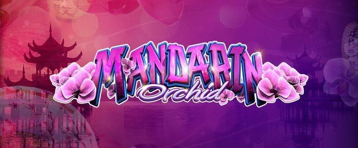 Mandarin Orchid logo