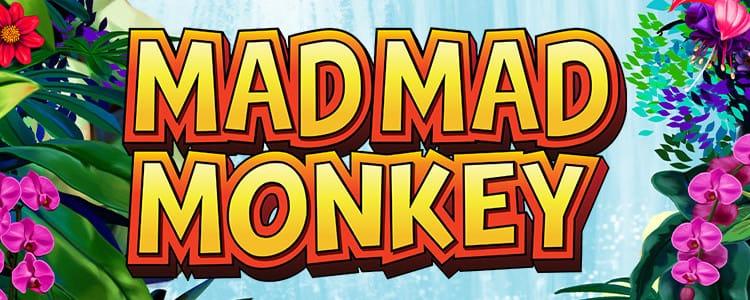 Mad Mad Monkey - Barbados Bingo