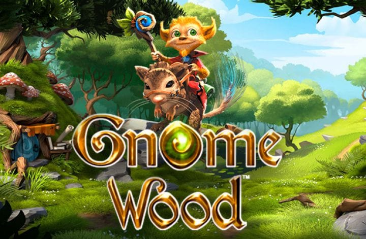 gnome wood game