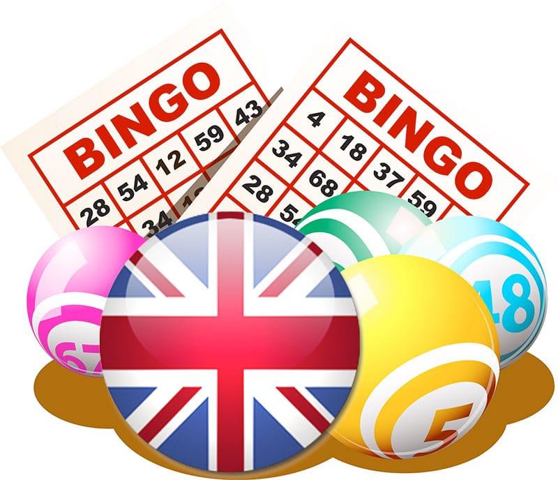 Bingo Mobile Cover