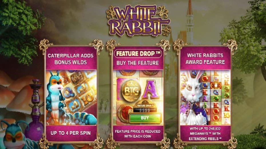 white rabbit online game help